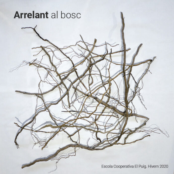 arrelant_al_bosc